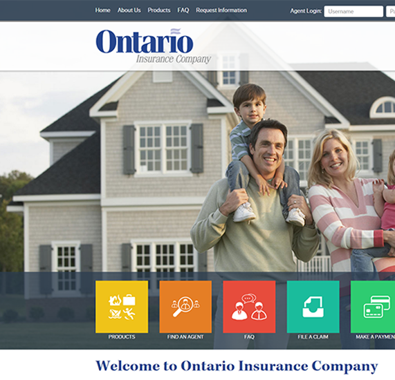Insurance Custom Content Management System Design Project