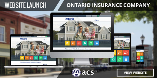 Insurance Website Design Projects   ACS Web Design & SEO